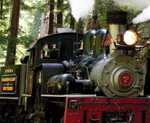 Roaring Camp Railroads, a Northern California attraction